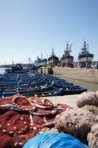 Лодки, на которых утром уходят за рыбой. Африка!